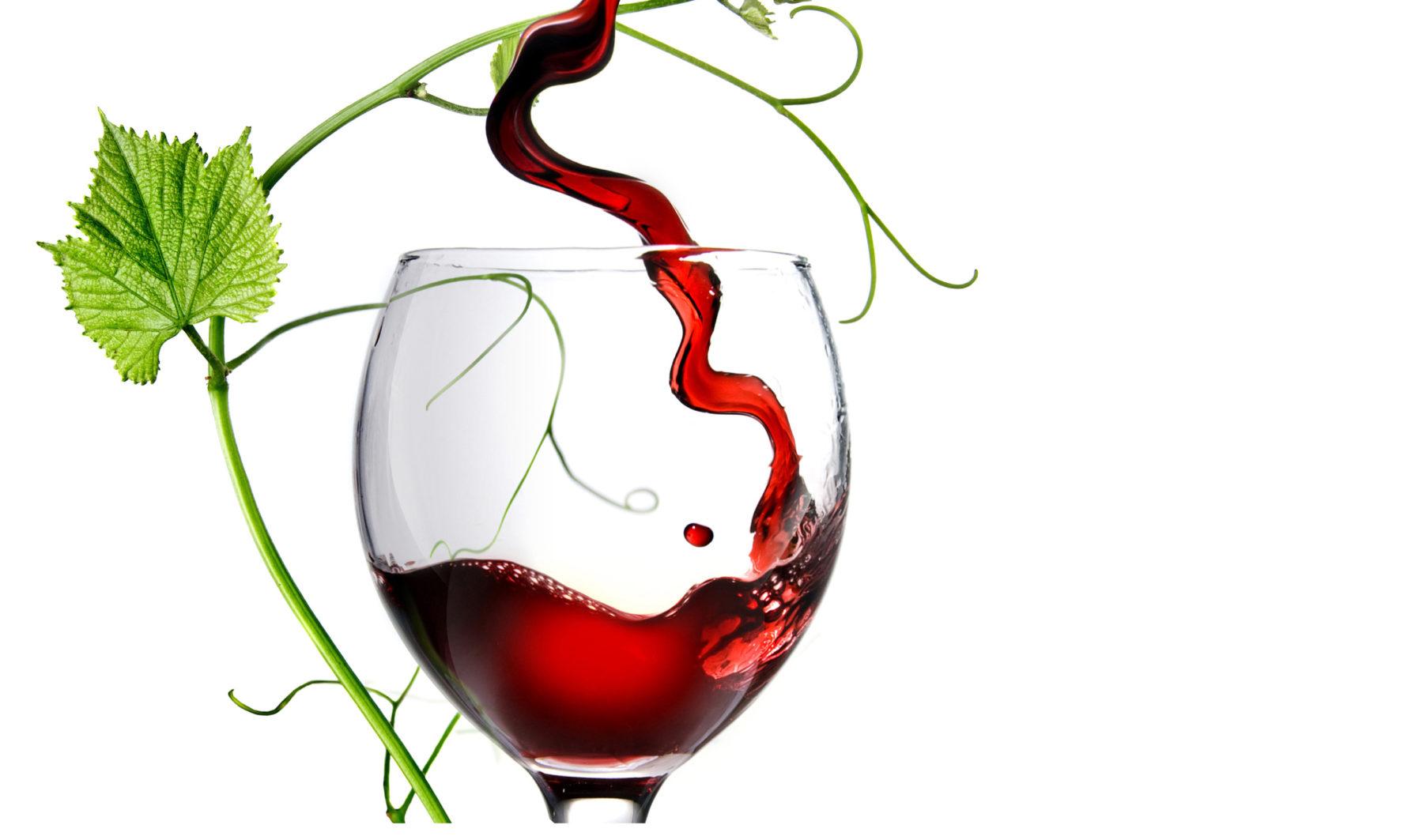 vinofeel